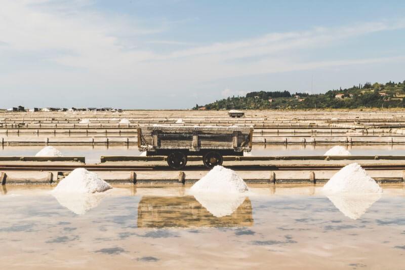 Piran - Sečovlje Saltworks